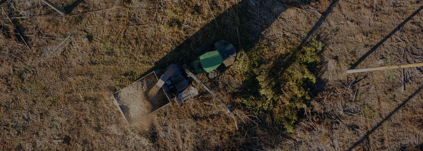 Technologia produkcji biomasy